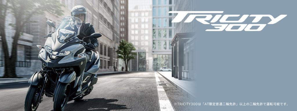 tricity300_index_key_2020_02_pc